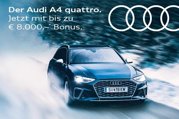 PRUCKNER Audi quattro
